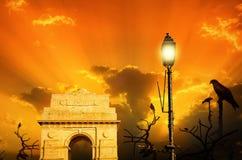 在印度门日落日出的风筝鸟 免版税库存照片