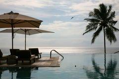 在印度-喀拉拉状态的游泳池 免版税库存照片