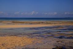 在印度洋,莫桑比克岛的热带海滩 免版税库存图片