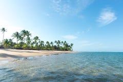 在印象深刻的天堂海滩的美好的天在Marau 免版税库存照片