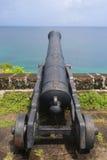 在历史乔治堡的老大炮圣乔治`的s,格林纳达 库存照片