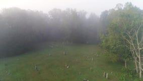 在历史的公墓上的向前空中有雾的看法 影视素材