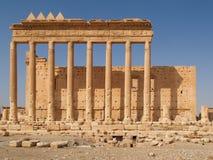 在历史的废墟的专栏,扇叶树头榈,叙利亚 库存图片