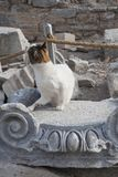 在历史的王位的猫 库存图片
