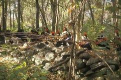 在历史美国独立战争再制定,秋天扎营,新的温莎, NY期间的美军士兵 免版税库存照片