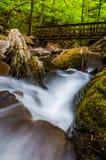 在厨房小河和一座走的桥梁的小瀑布在里基茨幽谷国家公园 库存图片