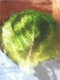 在厨房板的无头甘蓝叶子 图库摄影