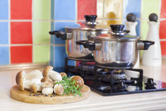 在厨房的牛肝菌蕈类蘑菇 免版税库存照片