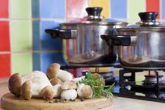 在厨房的牛肝菌蕈类蘑菇 库存照片