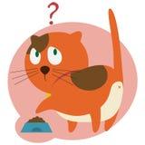 在厨房的红色猫 库存照片