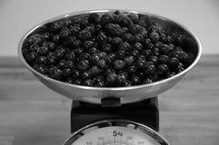 在厨房等级的黑刺李莓果 免版税库存照片