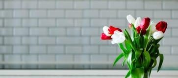 在厨房背景的新鲜的白色和红色郁金香 从丈夫,人的礼物 Copyspace 钞票 库存图片