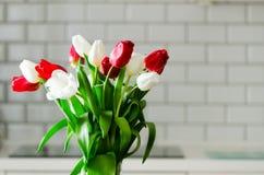 在厨房背景的新鲜的白色和红色郁金香 从丈夫,人的礼物 Copyspace 图库摄影
