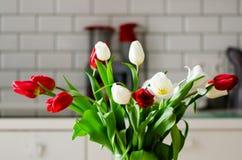 在厨房背景的新鲜的白色和红色郁金香 从丈夫,人的礼物 Copyspace 库存图片