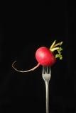 在叉子的萝卜 免版税库存图片