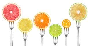 在叉子的被隔绝的裁减柑橘水果 免版税库存照片