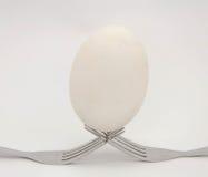 在叉子的鸡蛋 免版税库存照片