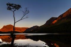 在发光的moutains的壮观的日落与一个镜子湖和一个现出轮廓的桦树在Buttermere Cumbria,英国, 免版税库存图片