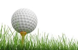 在发球区域的高尔夫球与绿草 免版税图库摄影