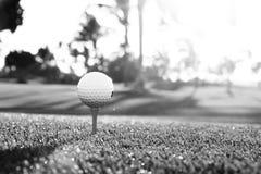 在发球区域的高尔夫球在一个被弄脏的绿色领域的高尔夫球场在日落 黑色白色 免版税库存照片