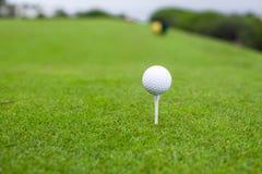 在发球区域的高尔夫球在一家美丽的高尔夫俱乐部 免版税库存图片