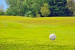 在发球区域的高尔夫球 库存图片