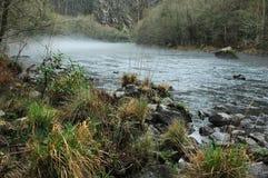 在变成银色的河的雾 免版税库存照片