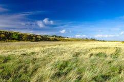 在叙尔特岛海岛上的风景 免版税库存照片
