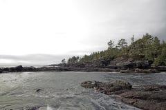 在口岸兰福庐阿的植物的海滩 使夜间海岛低和平的水坑沙子浪潮湿的温哥华靠岸 图库摄影