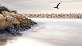 在口岸的剧烈的海景 免版税库存照片