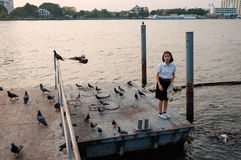 在口岸的女学生哺养的鱼 免版税图库摄影