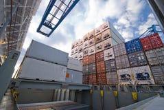 在口岸的容器操作与起重机和台架装货/释放容器 库存图片