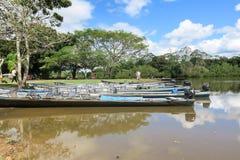 在口岸的小船在Madidi河 免版税库存图片