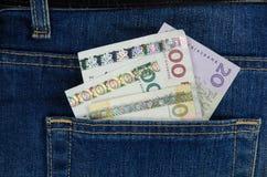 在口袋的钞票 免版税图库摄影