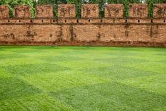 在古城墙壁前面的草地 免版税库存图片