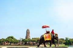 在古城的大象乘驾游览中的游人在阿尤特拉利夫雷斯,泰国 免版税库存照片