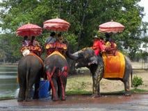 在古城的大象乘驾游览中的游人2012年4月14日的在阿尤特拉利夫雷斯 库存照片