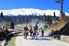 在古尔马尔格,印度的旅游马骑术 图库摄影