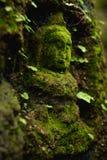 在古庙的青苔盖的菩萨雕象 库存照片