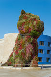 在古根海姆美术馆前面的小狗在毕尔巴鄂 免版税图库摄影