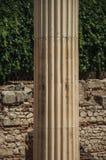在古罗马广场大厦的大理石柱在梅里达 库存照片