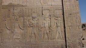 在古老埃及寺庙墙壁上的象形文字的雕刻 股票视频
