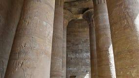 在古老埃及寺庙墙壁上的象形文字的雕刻 股票录像