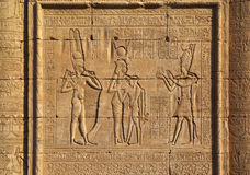在古老埃及寺庙的象形文字的雕刻 免版税库存图片