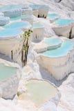 在古老希拉波利斯,现在棉花堡,土耳其的石灰华水池 库存图片