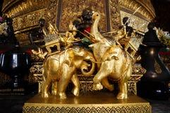 金大象 免版税库存图片