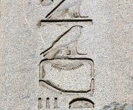 在古老的埃及象形文字 免版税库存图片
