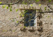 在古老石墙的窗口 免版税库存照片