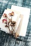 在古老空的照片的干燥玫瑰 背景几何老装饰品纸张葡萄酒 库存照片