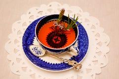 在古色古香的瓷茶杯的清凉茶注入 免版税图库摄影